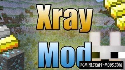 XRay Mod - Wallhack Texture Pack For Minecraft 1.14.4, 1.14.3