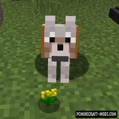 Bee Barker Mod For Minecraft 1.12.2, 1.10.2, 1.8