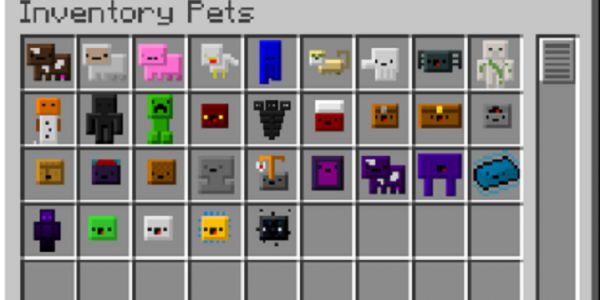 Inventory Pets Mod For Minecraft 1.12.2, 1.11.2, 1.10.2, 1.9.4