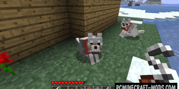 Sophisticated Wolves Mod For Minecraft 1.12.2, 1.11.2, 1.10.2, 1.9.4