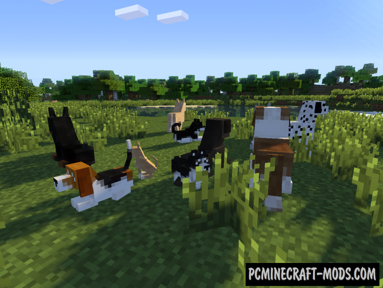 DoggyStyle Mod For Minecraft 1.8.9, 1.8, 1.7.10
