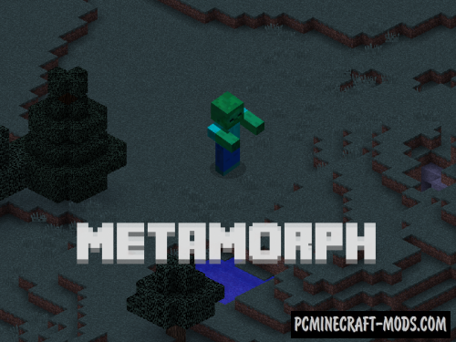 Metamorph - Morph Mod For Minecraft 1.12.2
