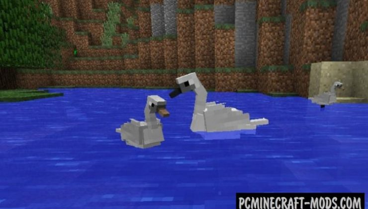 Exotic Birds - New Creatures Mod For Minecraft 1.16.4, 1.12.2