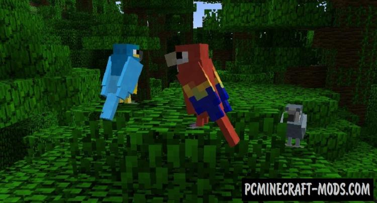 Exotic Birds Mod For Minecraft 1.12.2, 1.11.2, 1.10.2, 1.7.10