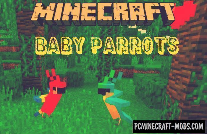 Baby Parrots Minecraft PE Bedrock Addon 1.6.0, 1.5.3
