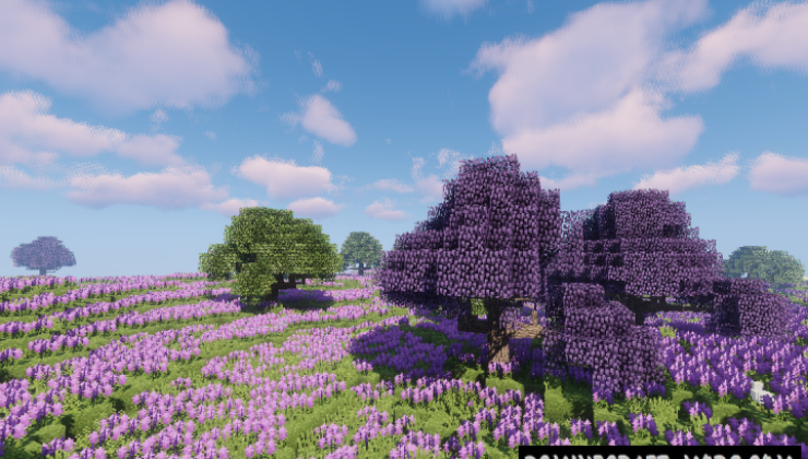 Dynamic Trees BOP Compat Mod For Minecraft 1.12.2