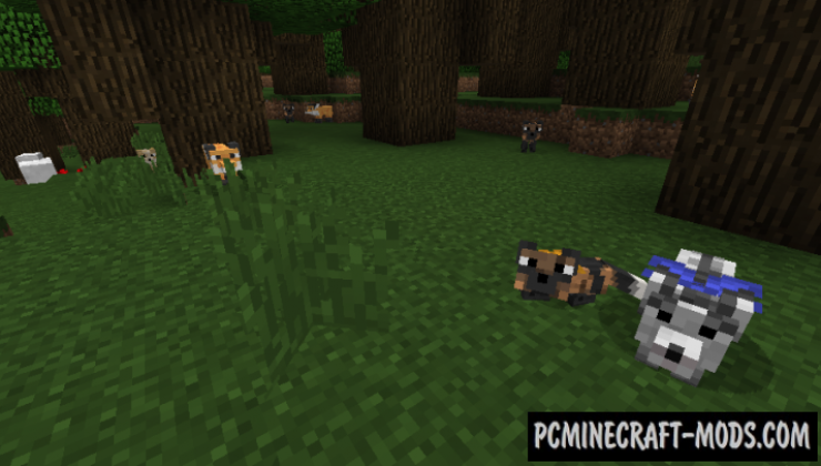 Outfox - New Creature Mod For Minecraft 1.12.2