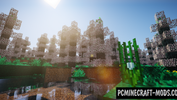 Oh The Biomes You'll Go - New Biomes Mod MC 1.15.2, 1.14.4
