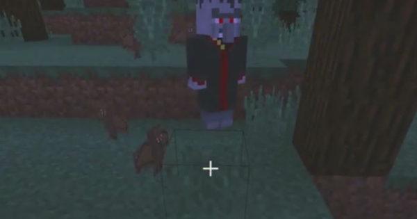 Vampire Blood Addon For Minecraft PE 1 11, 1 10 | PC Java Mods
