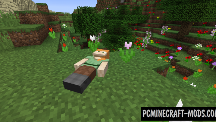 Corpse - Realistic Tweak Mod For Minecraft 1.16.1, 1.15.2