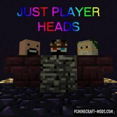 Just Player Heads - Tweak Mod For Minecraft 1.16.3, 1.15.2, 1.14.4