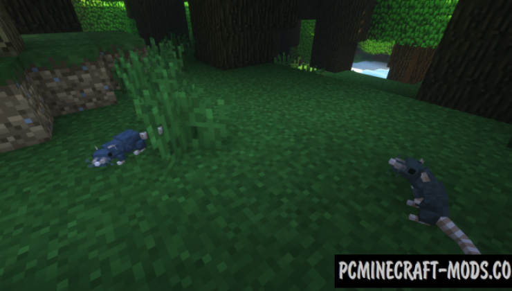 Rats - Creatures Mod For Minecraft 1.16.3, 1.15.2, 1.14.4, 1.12.2