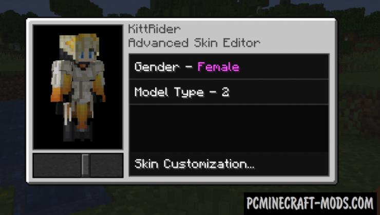 Advanced Skin Customization - GUI/HUD Mod 1.15.2, 1.14.4