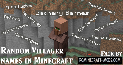 WASD Random Villager Names Data Pack For Minecraft 1.14.4