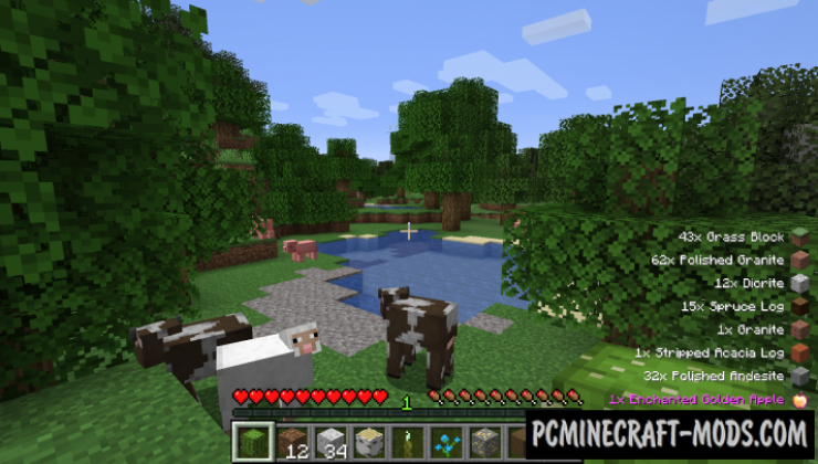 Pick Up Notifier - HUD Mod For Minecraft 1.16.5, 1.14.4, 1.12.2