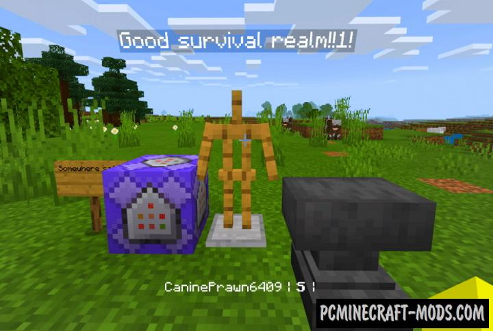 EZ Compass Function Addon For Minecraft PE 1.17, 1.16