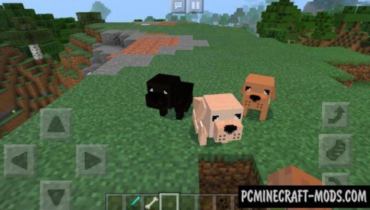 Dogs Addon For Minecraft PE 1.17, 1.16 iOS/Android