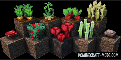 Bonsai Tree Crops Mod For Minecraft 1 12 2 1 10 2 Pc Java Mods