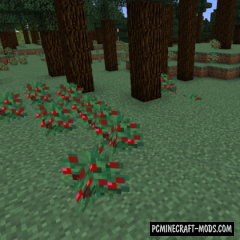Vanilla+ New Biomes Mod For Minecraft 1.16.1, 1.15.2