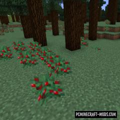 Vanilla+ New Biomes Mod For Minecraft 1.16.5, 1.15.2