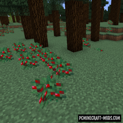 Vanilla+ New Biomes Mod For Minecraft 1.16.5, 1.15.2
