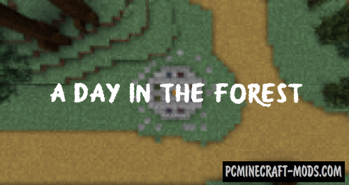 A Day in the Forest - Puzzle, Finding Map For MC