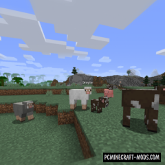 Identity - Morph Fabric Mod For Minecraft 1.16.5, 1.16.4