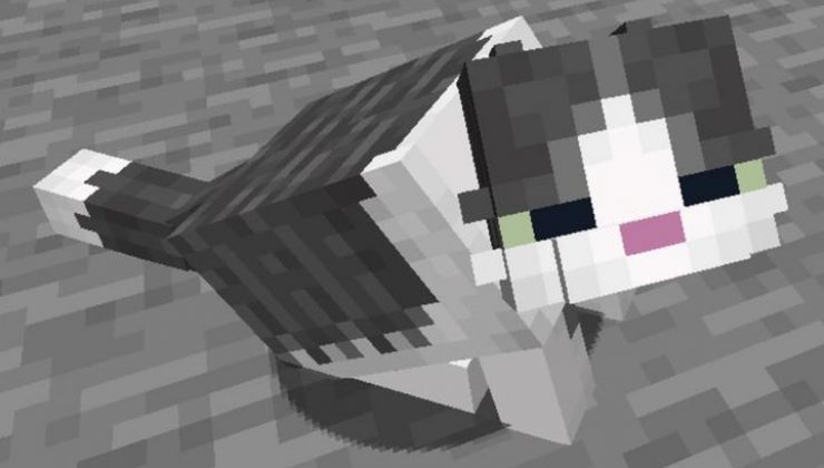 Fat Cat Mod-Resource Pack For Minecraft 1.16.4, 1.15.2, 1.14.4