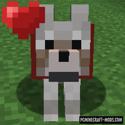 Save Your Pets - Tweak Mod For Minecraft 1.16.5, 1.16.4