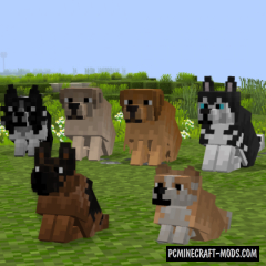 Better Dogs 16x Resource Pack For Minecraft 1.16.5, 1.16.4